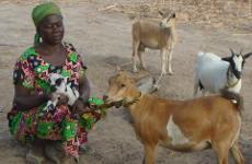 Rosalie s'est inscrite à une formation en élevage